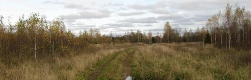Охота в листопадную пору