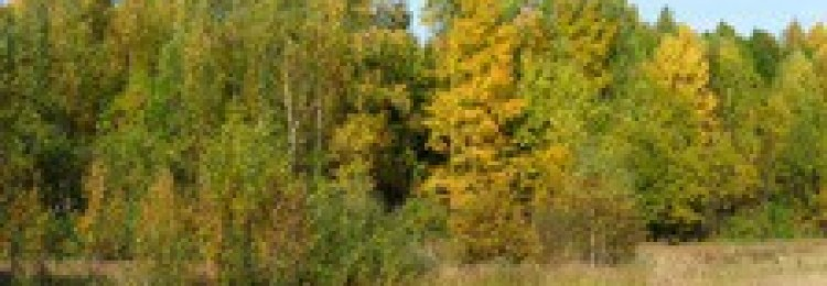 Природа Кировской области в фотографиях