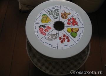 Электросушилка для грибов и ягод