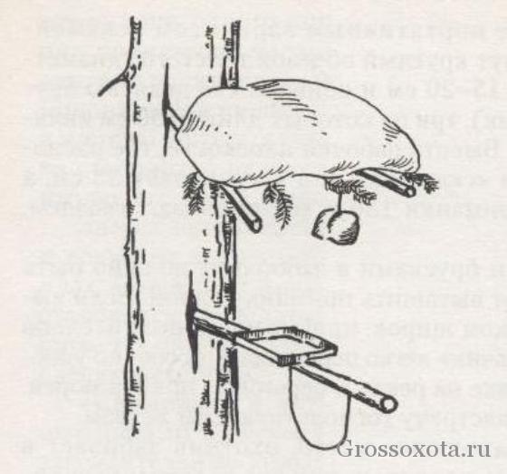 петля для ловли оленей